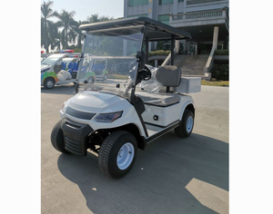 2 Seater Electric Cargo Car (LT-A827.2 cargo)